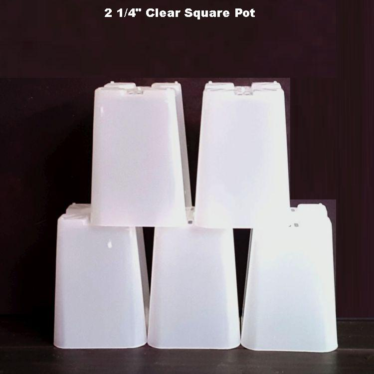 (5 Pack) 2 1/4'' Clear Square Plastic Orchid Pot by Sophie's Orchids
