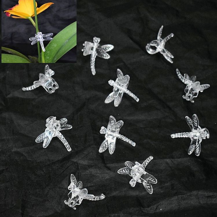 (100 Pack) Clear Plastic Dragonfly Clips by Sophie's Orchids